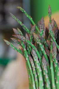 asparagus_72dpi