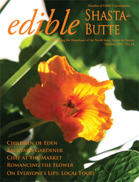front cover summer 2010