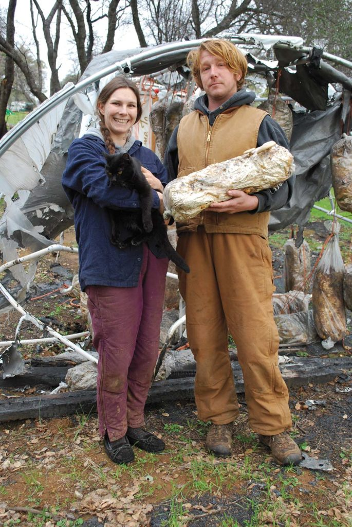 IT'S ON TO PLAN B AT TURKEY TAIL FARM AS FARMERS BUILD A NEW VISION