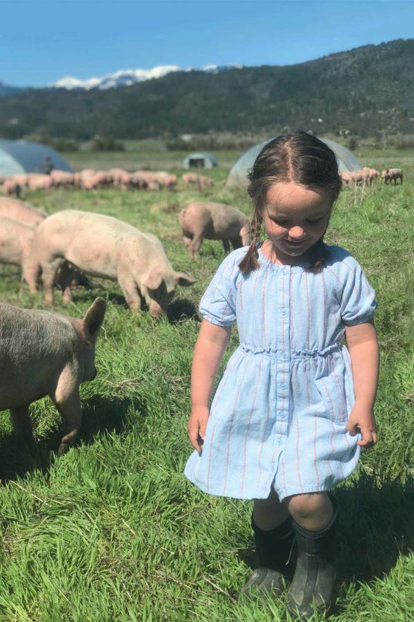 california-heritage-farms